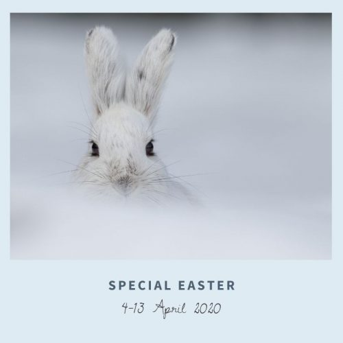 easter-holiday-in-trentino