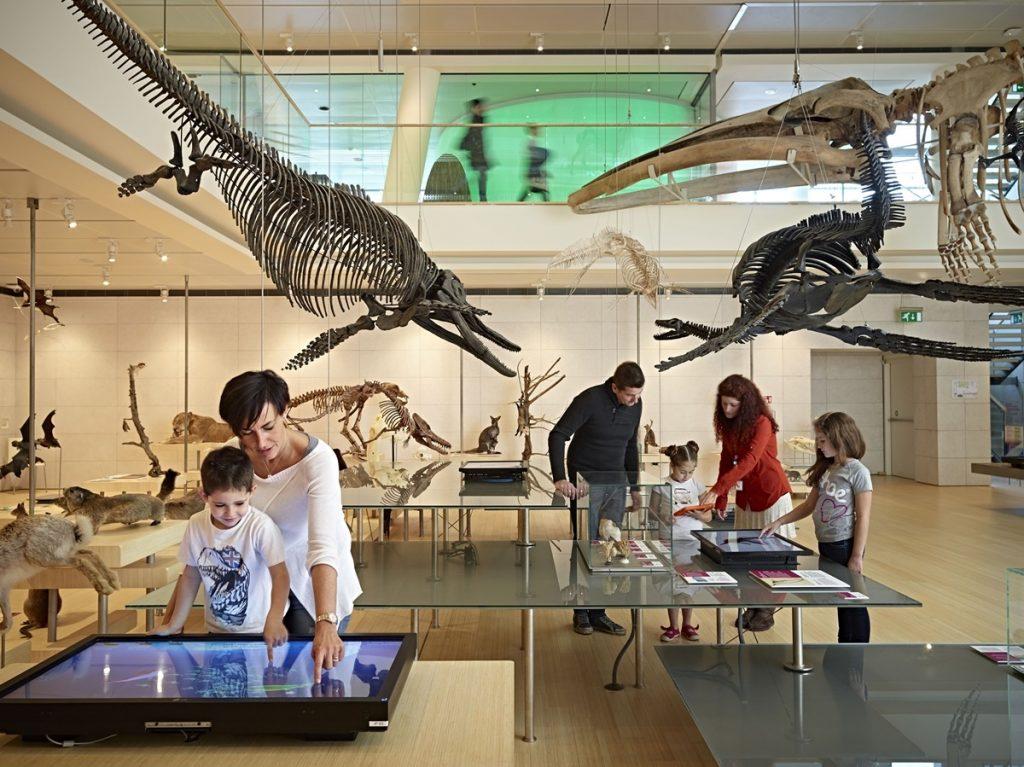 Museo interattivo Muse Trento